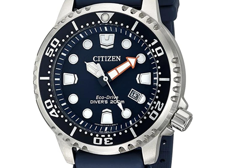 Promaster Professional Diver Citizen Watch